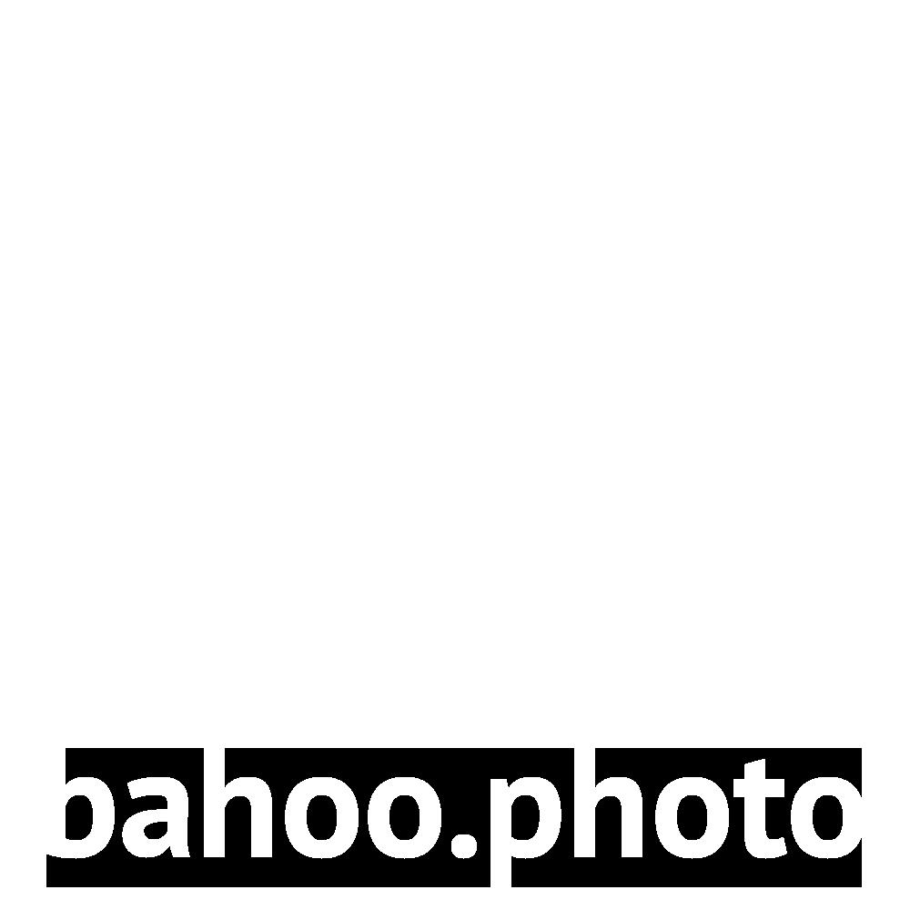bahoo.photo